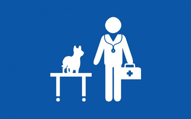 b29781ef7e87 Ο Δεκάλογος (και βάλε) της καλής συνεργασίας με τον κτηνίατρο σας ...